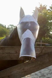 Full Face Fly Mask with Nose Extension by BEFIX